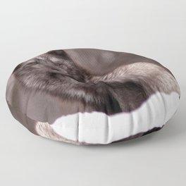 Fox Floor Pillow