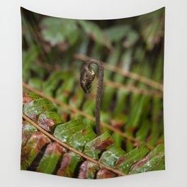New Fern Growth Rising Above Old in the Pacific Northwest Wall Tapestry