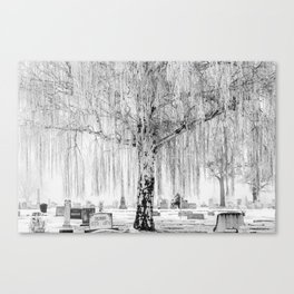 Frozen Graves Canvas Print