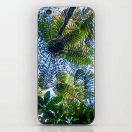 Giant ferns in redwood forest, Rotorua, New Zealand iPhone Skin