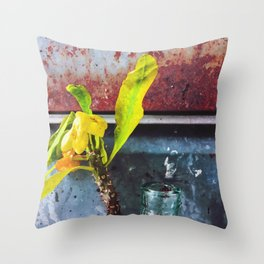 yellow euphorbia milii plant with old lusty metal background Throw Pillow