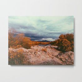Tonto National Park, Arizona Metal Print