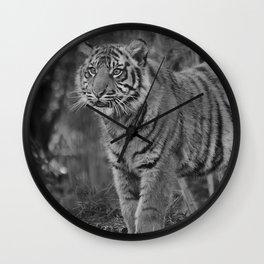 Amur Tiger Cub Wall Clock