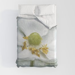 Anemone with Textured Background Comforters