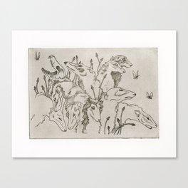 The Greyhound & The Moth Canvas Print
