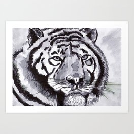 Tiger - Animal Series in Ink Art Print