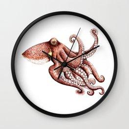 Octopus (Octopus vulgaris) Wall Clock