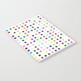 Big Hirst Polka Dot Notebook