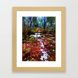 A Path in a Forest Framed Art Print