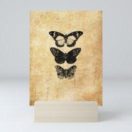 Vintage Antique Butterflies Entomology Mini Art Print