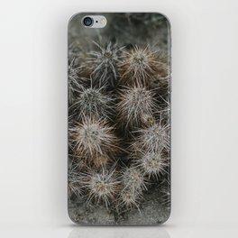 Monochrome Cactus in Joshua Tree National Park, California iPhone Skin