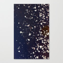 A Little Cold To Swim Canvas Print