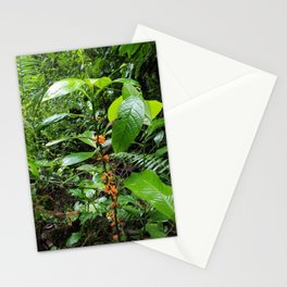 ORANGE FUZZIES WITH LEAVES Stationery Cards