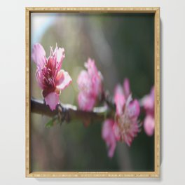 A Bough Of Blurred Peach Blossom Serving Tray