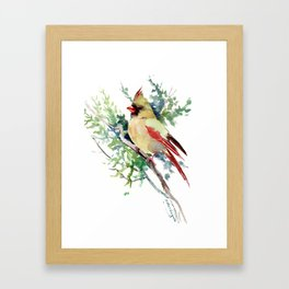 Cardinal Bird Artwork, female cardinal bird Framed Art Print