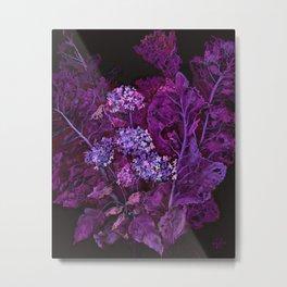 Hydrangea and Horseradish, Black & Purple Metal Print