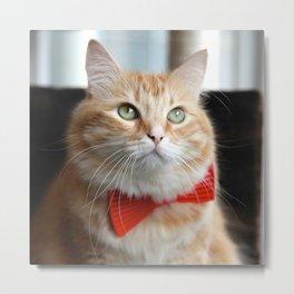 Hobbes in bow tie Metal Print