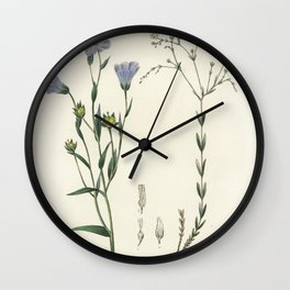 Agaricus semiglobatus  from Medical Botany (1836) by John Stephenson and James Morss Churchill Wall Clock