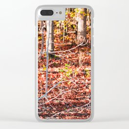 Colorful Autumn/fall forest Clear iPhone Case