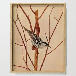 Neltje Blanchan - Bird Neighbours (1903) - Black and White Creeping Warbler Serving Tray