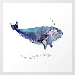 Rigth Whale artwork Art Print