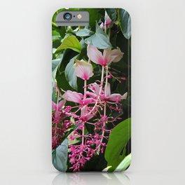 Pink Lanterns II iPhone Case