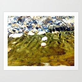 Comunidad de caracoles Art Print