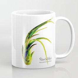 Tillandsia Paucifolia Air Plant Watercolors Coffee Mug