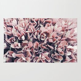 Pink Cactus Leaves Photography | Nature | Spring | Blush Pink Rug