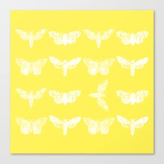 Yellow Moth's; Canvas Print