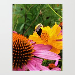 A Work Day For The Bee Poster