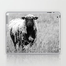 Sheep with sharp eyes Laptop & iPad Skin
