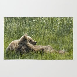 Drifting Off - Bear Cubs, No. 7 Rug
