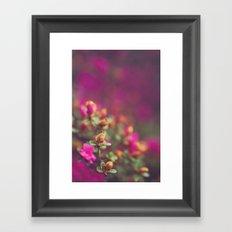 The Pink Orange Framed Art Print