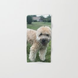 Smiling Soft Coated Wheaten Terrier Hand & Bath Towel