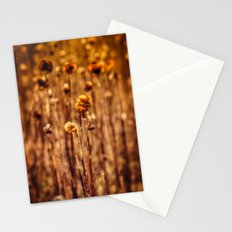 Sunflower Heads in the Winter Sun Stationery Cards