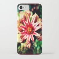 succulent iPhone & iPod Cases featuring Succulent by Eve Penman