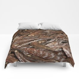 Harvested Carob Pods - Haripur Comforters