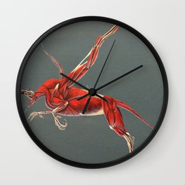 Gryphon Muscle Anatomy No Labels Wall Clock