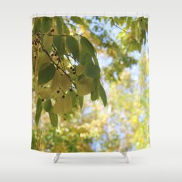 Leaves in the Sun Shower Curtain