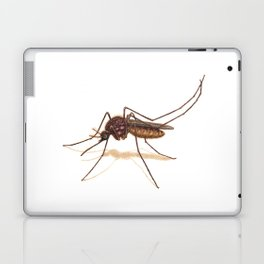 Mosquito by Lars Furtwaengler | Colored Pencil / Pastel Pencil | 2014 Laptop & iPad Skin