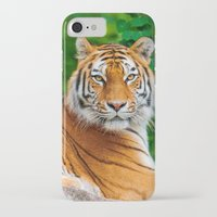 asian iPhone & iPod Cases featuring Asian Tiger by Tom Lee