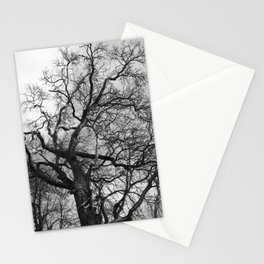 Old oak tree. Moscow district. Stationery Cards
