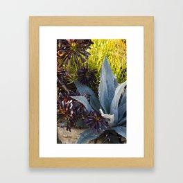 Agave in Blue     Botanical Framed Art Print