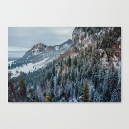 Forest - Bavarian alps Canvas Print