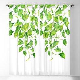 Arrowhead Vine Blackout Curtain