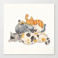 Cat Nap (Siesta Time) Canvas Print
