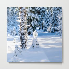 Christmas Snow Elf in Forest Metal Print