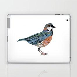Typographic Sparrow Laptop & iPad Skin