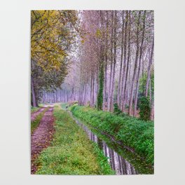 Country road close to an irrigation ditch in a natural park during autumn Poster